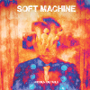 soft machine_hidden details100x100