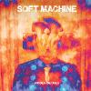 soft machine_hidden details100x100